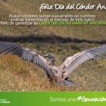 En #Ecuador con el apoyo de instituciones públicas y privadas trabajamos para conservar nuestra fauna silvestre http://t.co/E3PmrPXVnG