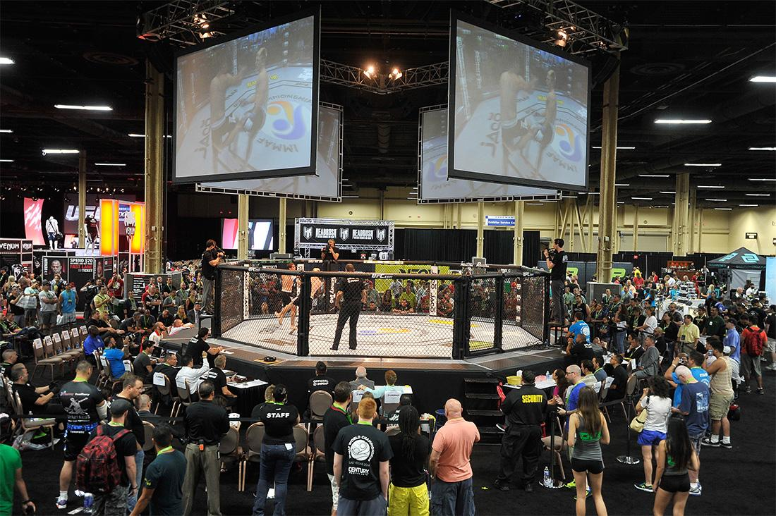.@LASairport welcomes MMA fans as @UFCFightWeek heats up #Vegas! #UFC189 http://t.co/kRJYEm0Qai