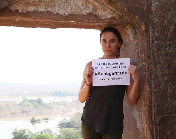 Read @melaniecmusic blog from her India trip supporting @tigertimenow #bantigertrade campaign! http://t.co/EBaUhzLKc3 http://t.co/HVSsUYC0fM