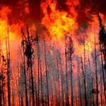Forests minister to provide update on B.C. fires http://t.co/85HLQHbQDz http://t.co/IhjU4TC2wg