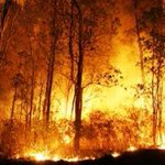 Shout out to all the crews in Western Canada fighting the many forest fires. rock1 http://t.co/fxnhXxO6Wm http://t.co/sv3nIGNirN