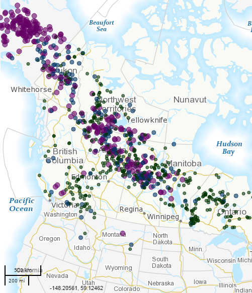 Canadian Wildfire Map Shows In Purple Large Fires There Alaska