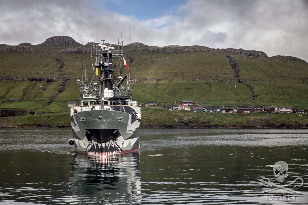 The Sam Simon Arrives In The Faroe Islands http://t.co/svZu8aXuRn