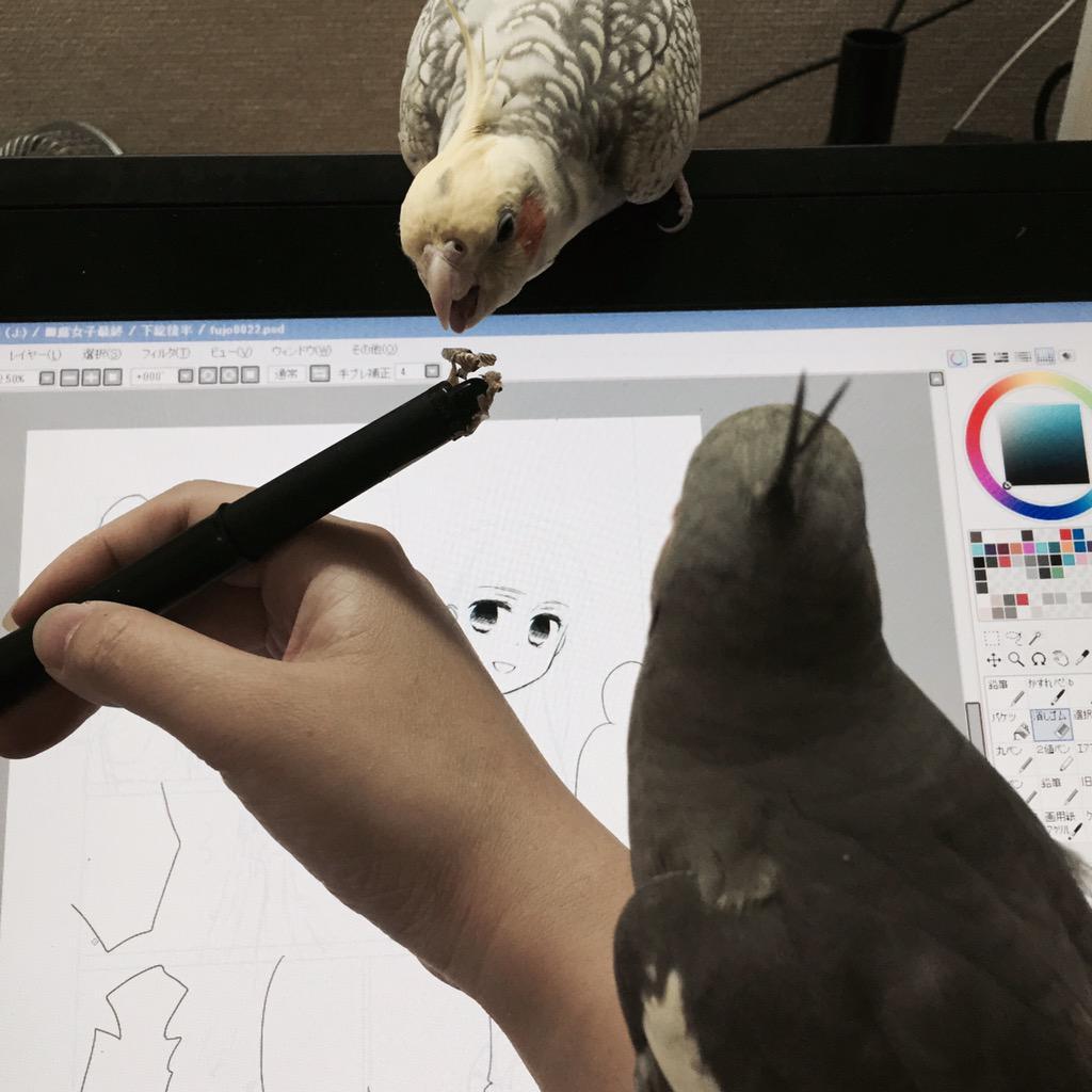#絵を描く人が撮った写真が見たい http://t.co/1NxSUJZFS6