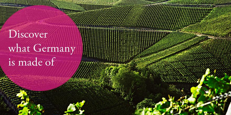 13 wine growing regions, 2,650 individual vineyards, countless unforgettable wines. http://t.co/crQeZ8wLLF