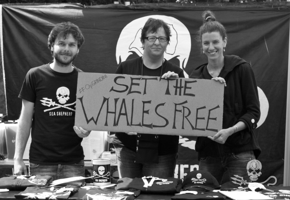 RT @seashepherd: #OpGrindini 'SET THE WHALES FREE!' Support our crews. Spread the word & donate: http://t.co/OfgpdV0JQf #SeaShepherd http:/…
