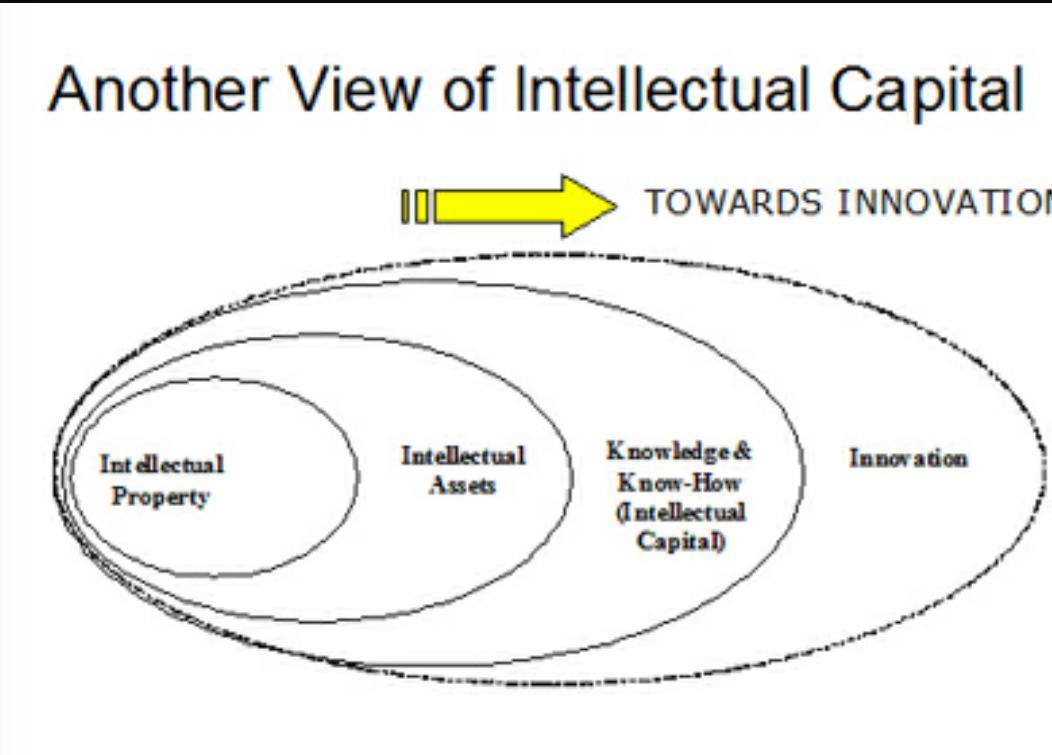 intellectual capital