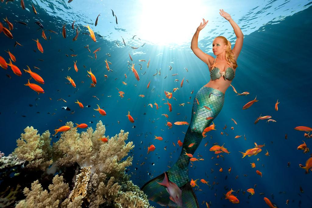 """I have 14 different tails each costing about £3000"" – @MermaidMelissa, professional mermaid http://t.co/8jCnAFQ28r http://t.co/4RTLU9tSST"
