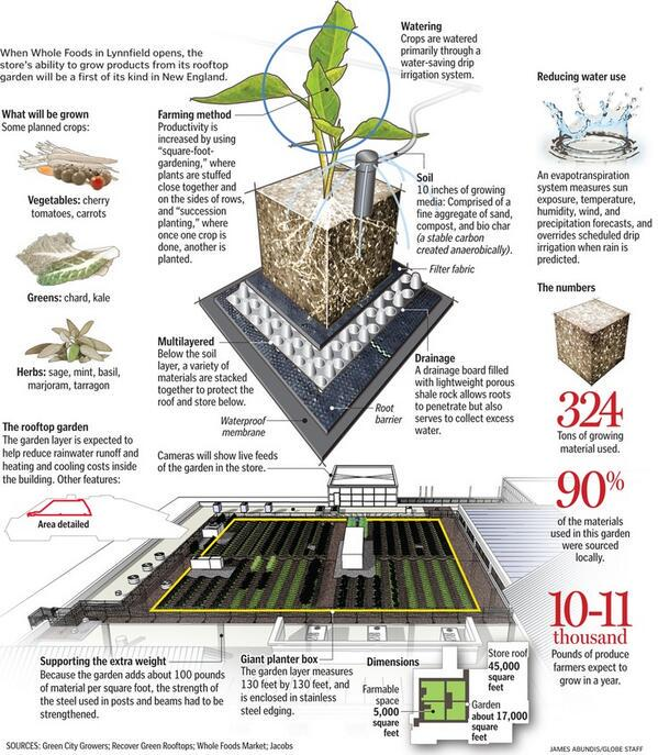 Hoe ziet #duurzaamheid op daken eruit? Zo bijvoorbeeld... #daklandbouw @romanista @OpSteenbreek @HeavenofDelight http://t.co/gmVfRM5yYh