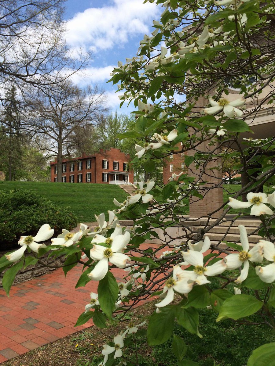Athens, Ohio: The Most Beautiful College Town There Ever Was http://t.co/5qwlHvEQQ1 @TheOdyssey @ohiou http://t.co/EeTtyTqsOg