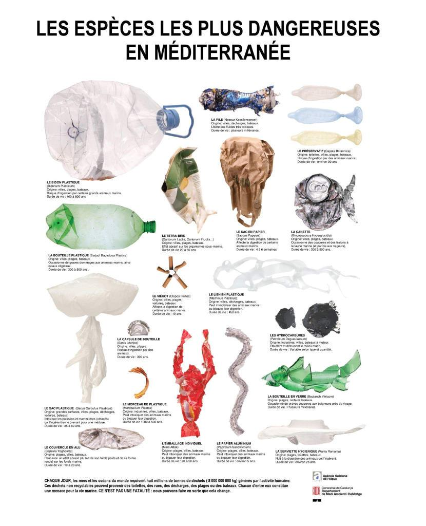 [ À RT - diffuser le plus possible ! ]  Les espèces les plus dangereuses en Méditerranée via @OceanoMonaco http://t.co/W3zkXO1kUc
