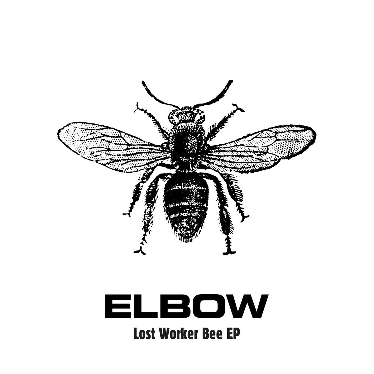elbow release a new EP on 24th July. The 'Lost Worker Bee' EP has 4 new songs based on their home town of Manchester. http://t.co/ncyfJlQwCb
