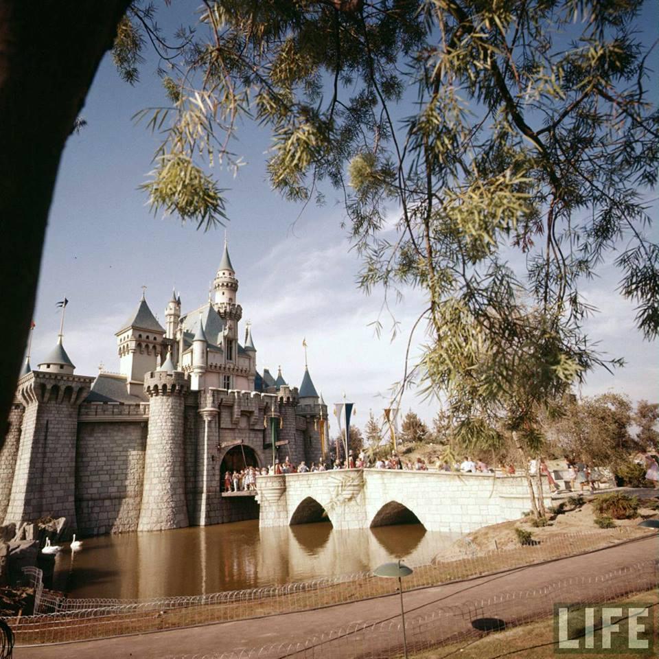 Sleeping Beauty Castle Dedication Opening Day 1955 http://t.co/BnvSs9CUL5