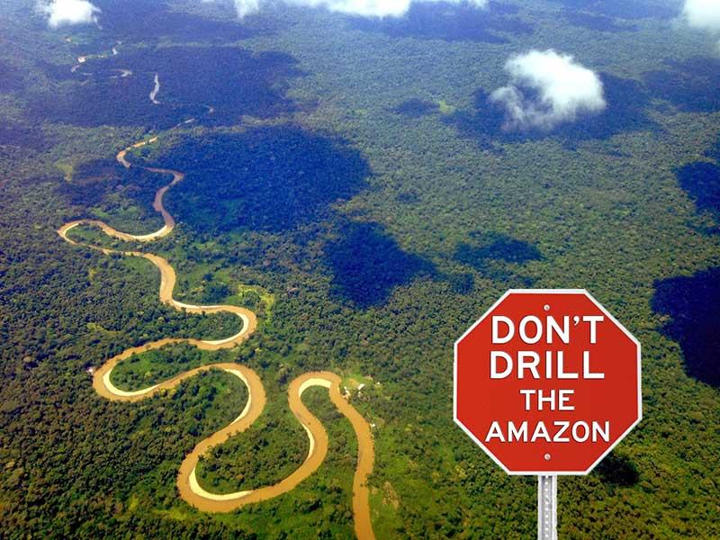 RT @AmazonWatch: Nature bats last. Tell China: Don't Drill the Amazon! http://t.co/YFdQDz8b03 http://t.co/804mP6hN8q