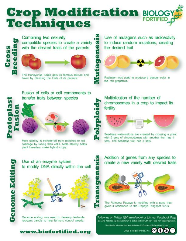 Check out our snazzy new infographics on #GMOs and other crop improvement techniques! http://t.co/d98pQfJdgV http://t.co/nzFvCnfYOu