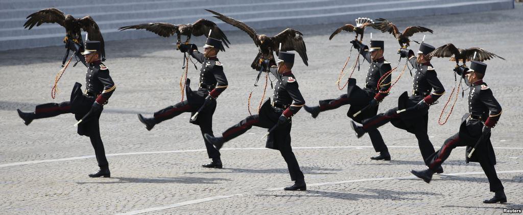 パリ祭(バスティーユ・デイ・パレード2015)で鷹匠の技を披露するメキシコ士官学校生。・・・なぜ鷹匠のスキルを陸軍で仕込んでいるのか謎だけど、とりあえずカッコイイぞw http://t.co/DiWGeP5Upy