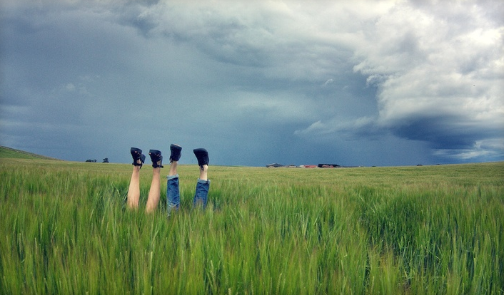 RT @hitRECord Feeling romantic? Channel that in this week's #LensProject: http://t.co/dnmtKFNMu7 http://t.co/XfveMhtrMk