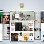 Create a beautiful and professional website with TeslaThemes Lifetime Subscription: http://t.co/gC25CzW6Nk http://t.co/yvNmRB05So