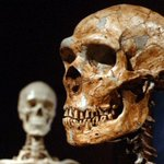 Caveman's cavity: 14,000-year-old tooth sheds light on early dentistry http://t.co/DrWJP044f7 http://t.co/n2cHmvFCMp