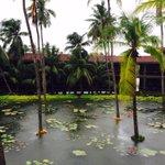 At Dindi resort..