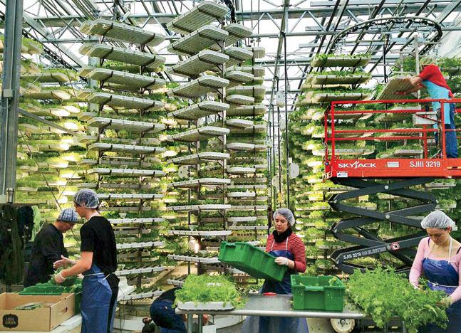 10 facts we all need to know about vertical farming: http://t.co/BptGmI2vZR @NFIB http://t.co/ke66NSrvNV