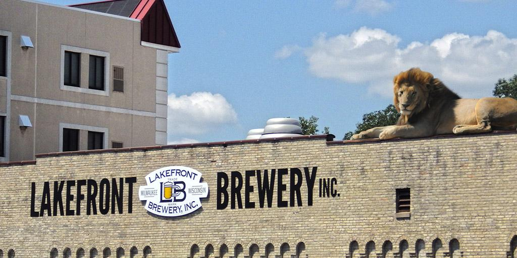 """The #MilwaukeeLion decided to sun himself atop our brewery after a tour. We told him, """"no,"""" but it's a friggin' lion http://t.co/KXLOo1kjvI"""