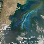 Study suggests tiny organisms cause brighter clouds over Southern Ocean: http://t.co/Mm5sBBTWo3 #EarthRightNow
