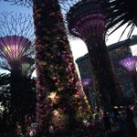 Image of gardensbythebay from Twitter