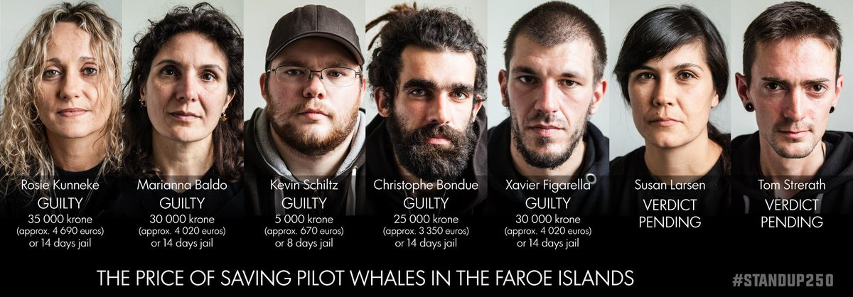 RT @seashepherd: #STANDUP250: 5 DEFENDANTS + #SeaShepherd GLOBAL FOUND GUILTY OF BREAKING THE GRIND LAW. APPEALS TO COME. #OpGrindini http:…