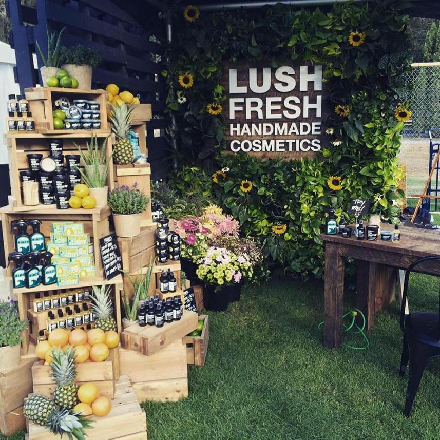lush business plan