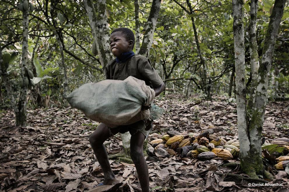 Have you ever thought about who is harvesting the cocoa for your chocolate bar?http://t.co/1SPwyCZRoi http://t.co/pjXsic22vF