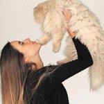 "Bien animal: ""También las mascotas sufren la delincuencia"" por @FranCorralS http://t.co/o9NedWn1rn http://t.co/tmSAfrkBgS"