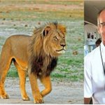 Five Facts You Need to Know about Walter Palmer, the Trophy Hunter who killed Cecil the Lion: http://t.co/yTBZDDQVkc http://t.co/6xuKCM0tpx