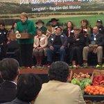 Campesinos emplazan a Presidenta a cumplir el programa de Gobierno http://t.co/KkVT8X8TYQ http://t.co/nYILtsq0Md