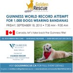 Help us take back the #GuinnessWorldRecord! Let us know youre coming: https://t.co/8M7Zx5Xvwf #ontario #toronto #dog http://t.co/NRC2RtI0lR