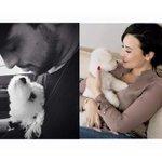 Demi e Wilmer perderam um filho, eles devem estar devastados ???????????????????????? #RipBuddy http://t.co/JaH6yTpTYX