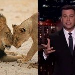 """""""Why are you shooting a lion in the first place?"""" Jimmy Kimmel breaks down over #CecilTheLion http://t.co/P4oHH9adlW http://t.co/i2ZtJLR2YE"""