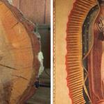 Carpintero asegura que se le apareció la Virgen María en un tronco recién cortado http://t.co/f4qlaYCZNs http://t.co/bl70zRHmFp