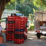 Incautan 285 kilos de marihuana transportada en camión frigorífico http://t.co/g03qm5l5ug http://t.co/XRsC4W3u5P