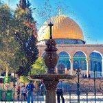 وقفنالك ياديرتنا بعزتنا وعروبتنا أرض #القدس نادتنا وصوت أمي  يناديني  فلسطيني! أنا #دمي_فلسطيني #محمد_عساف #ايوه_هغني http://t.co/pA1ZRhHt29