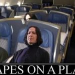 """""""Snapes on a Plane"""" ???? #NewHarryPotterBooks #HarryPotter http://t.co/cN93O3j4uF"""