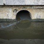 Atletas podem contrair doenças nas águas olímpicas do Rio, diz agência http://t.co/EudY4p6nw9 #G1 http://t.co/pVDLlYyxHB
