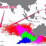 This oceanographic model predicted MH370 would end up where debris has now been found: http://t.co/JPbrlBpsJO http://t.co/8SpmUFG3DR