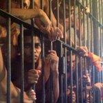 Maranhão: ONGs denunciam violações no complexo prisional de Pedrinhas http://t.co/8u7VkV1t6H http://t.co/vYn8LDXTKR