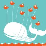 #UsoOTwitterPq é a melhor rede social. Sou da época em que passávamos raiva com essa baleia hahaha http://t.co/hxPpf6wiN4
