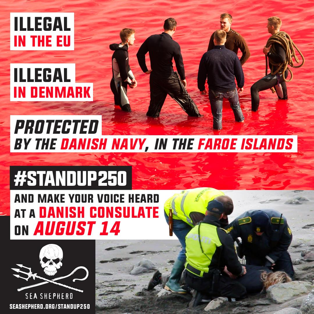 RT @SeaShepherd_USA: #StandUp250 Be a voice for 250 pilot whales killed on Jul 23 & the Sea Shepherd crew arrested: http://t.co/zdRiaZTOqc …