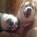 Its #FriendshipDay! http://t.co/0wExjDutJK