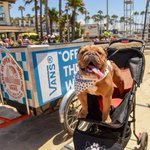Suns out, tongues out #VansUSOpen http://t.co/CfHAhNm1OS