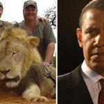 The White House to consider kicking Cecil the lions murderer out of his country. JUSTICE. http://t.co/0378H9nKYT http://t.co/SDZZQYC1Sz