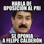 Das pena bigoton #DebatePAN http://t.co/leRJHYpbvV @beto_cardenasj